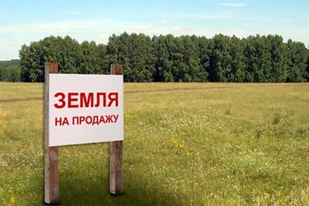 За 10 месяцев украинских земель продали на 215,4 млн. грн.